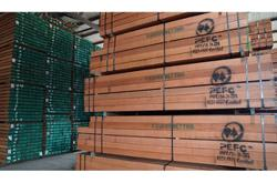 Did You Know? Understanding the timber industry's importance