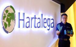 Hartalega quarterly net profit tops RM1bil for the first time as Covid-19 rages on