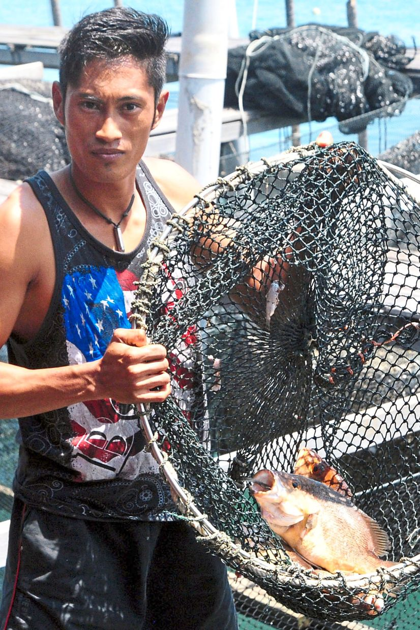 A fisherman showing a mature ocean fish that is ready to be sold at the market.