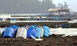 Five locations identified for fishing industry zones in state
