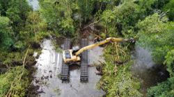 Villagers, environmentalists claim newly-planted mangrove trees have been destroyed near Sungai Segari in Perak