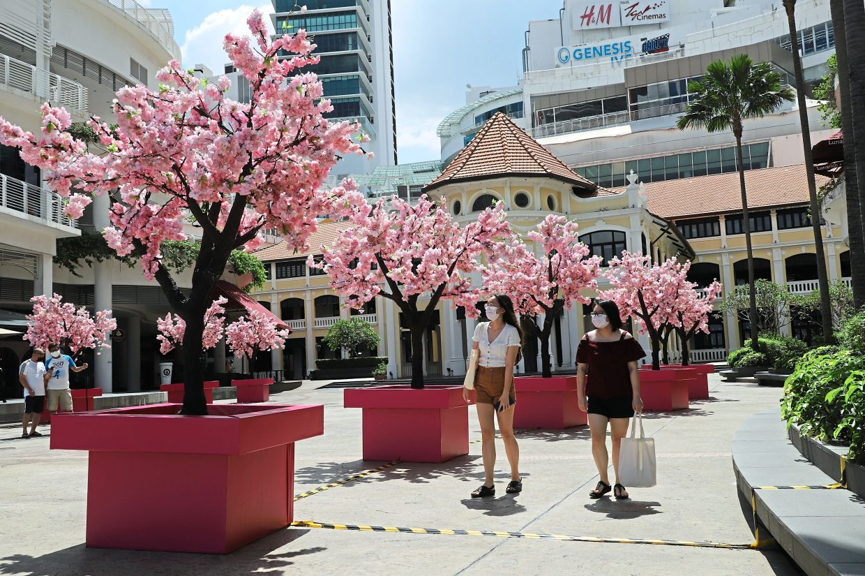 Shoppers at Gurney Paragon Mall enjoying the feel of  springtime with cherry blossom trees lining the Festive Square.