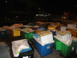 Johor Maqis foils attempt to smuggle 4,200kg of seafood to S'pore