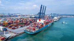 Thai shipping council to act to solve container shortage woes