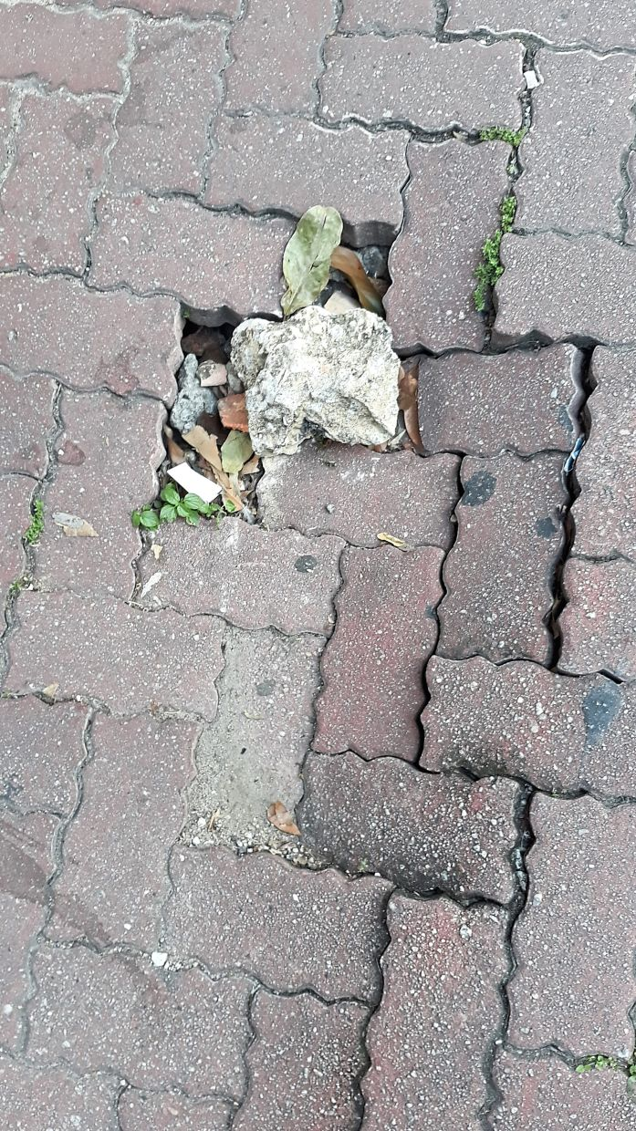 These uneven and broken tiles are a common sight in many of our pedestrian walkways. — Filepic