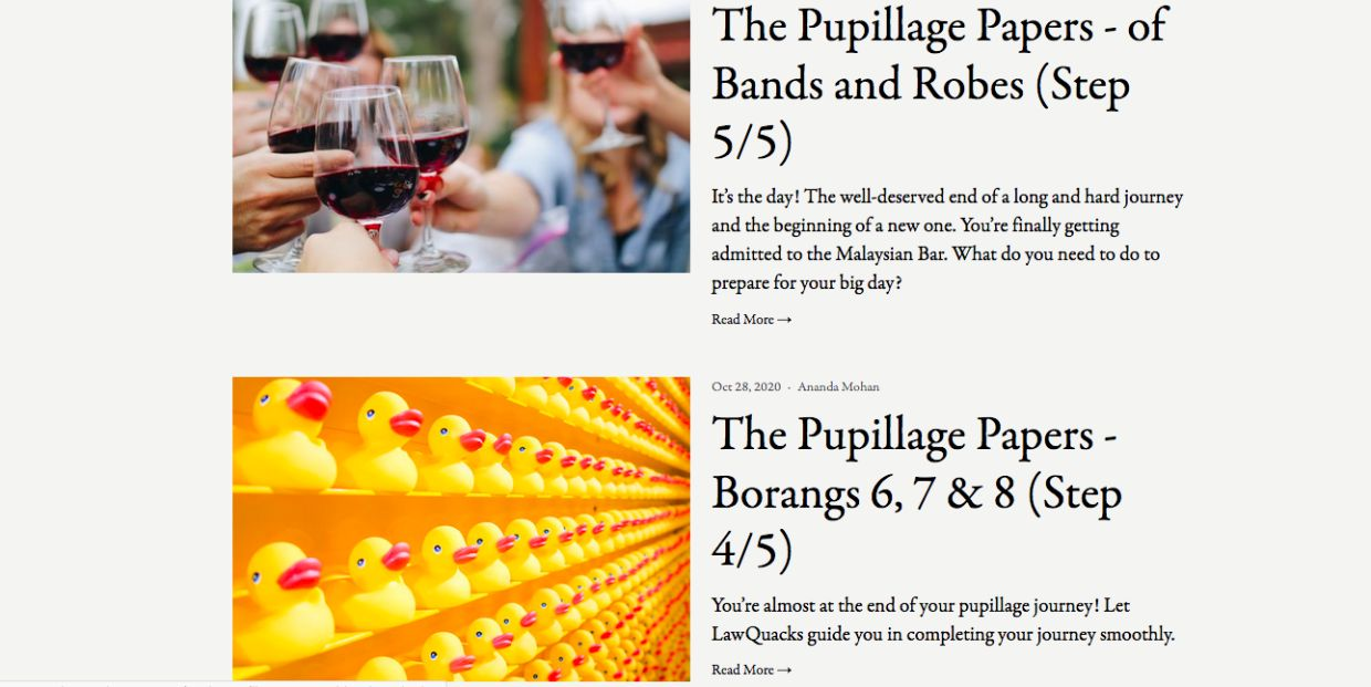 Among the most well-read articles have been those in The Pupillage Papers series.