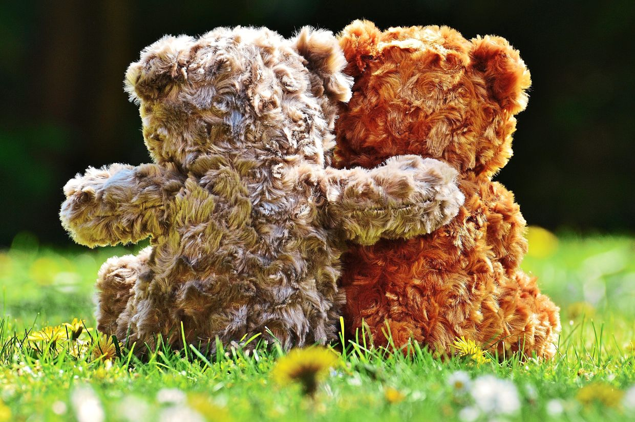 Buddy Bear child helpline offers emotional support and comfort to children in distress during the pandemic. Photo: Pixabay