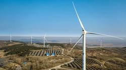 Huge potential seen in wind, solar power for China