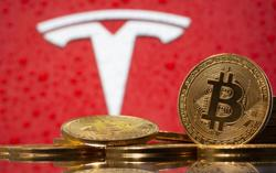Reddit user claiming to be Tesla insider appeared to reveal bitcoin buy a month ago