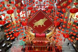 Feng shui experts predict brighter prospects ahead