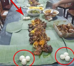 Reunion dinner pics with turtle eggs land family in hot water