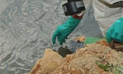 Factory fined RM18,000 for discharging waste into Prai River