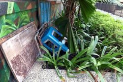 Decorative plants stolen in Mont Kiara