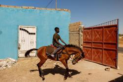 Senegal's savannah jockey dreams of international glory