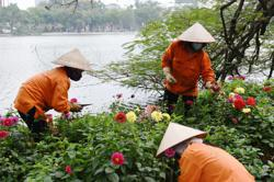 Remittances to Vietnam's Ho Chi Minh City at record US$6.1bil in 2020