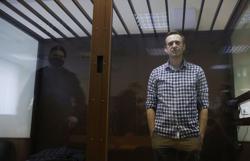 Kremlin critic Alexei Navalny loses jail appeal, is fined for slander