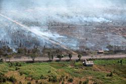 Jokowi warns of forest fires as hotspots detected