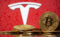 Investors jolted by sinking Bitcoin, Tesla and other market favorites