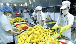RCEP offers Vietnam opportunity to expand agricultural exports