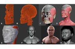 11,000-year-old Perak Man now has a face, thanks to 3D modelling