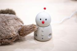 Hi, Robot: Japans android pets ease virus isolation