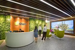 Singapore's Olam plans to list food ingredients unit by H1 2022