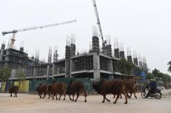 Vietnam Jan-Feb FDI inflows up 5% y/y to US$2.5bil, says planning ministry