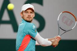 Goffin ends title drought with Montpellier crown