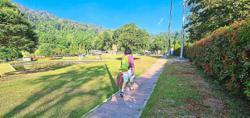 Joy of walking in green space