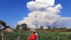 Indonesia Sinabung volcano belches huge ash column (update)