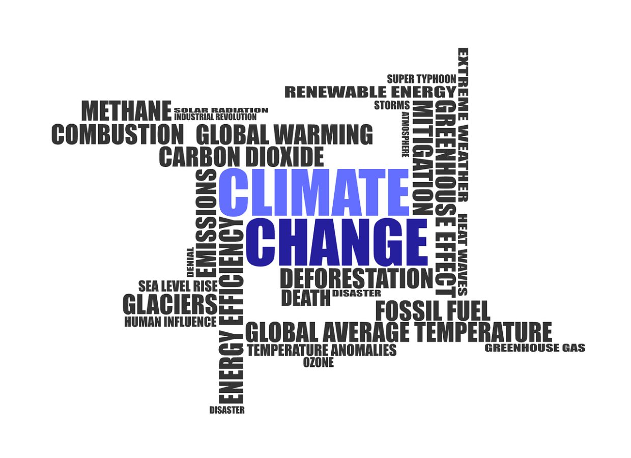Where global warming is concerned, every bit, every year and every choice matters. Photo: Pixabay