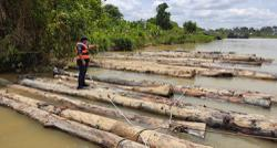 Sibu marine cops foil attempt to smuggle logs worth over RM48k