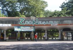 Zoo Negara to reopen on Friday (March 5)