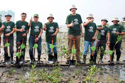 Port leads efforts to replant trees in Gelang Patah