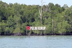 Island park a natural habitat for mangrove trees and migratory birds