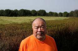 From new Portuguese home, Ai Weiwei plans tribute to