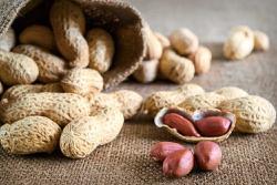 'Peanut allergies more common than Pfizer vaccine allergy'
