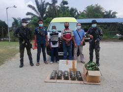 Esscom busts four alleged ketum smugglers at roadblock in Kalabakan, Sabah