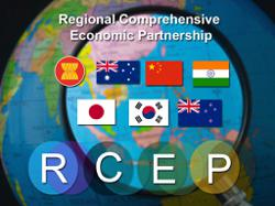 China has officially ratified RCEP deal, says commerce minister