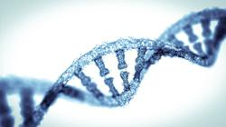No, the Covid-19 vaccine doesn't change your DNA