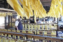 Dirty food processing factories fined and roasted