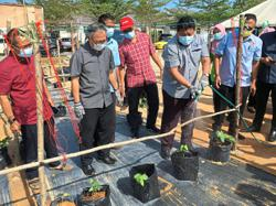 Promise of incentives and aid to help urban farming projects expand