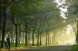 GAMUDA PARKS TO PLANT #OneMillionTrees