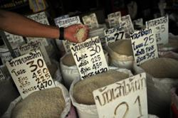 Thailand drops from second to fourth in global rice exports; Vietnam rice rising high