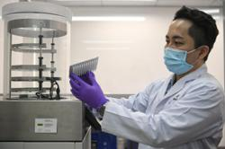 Singapore could soon freeze-dry Covid-19 PCR test kits