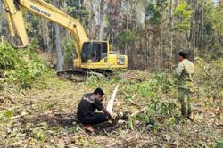 Cambodia's prominent businessmen being probed for alleged forest land grabbing