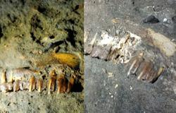 Video crew denies entering cave where fossil teeth were damaged