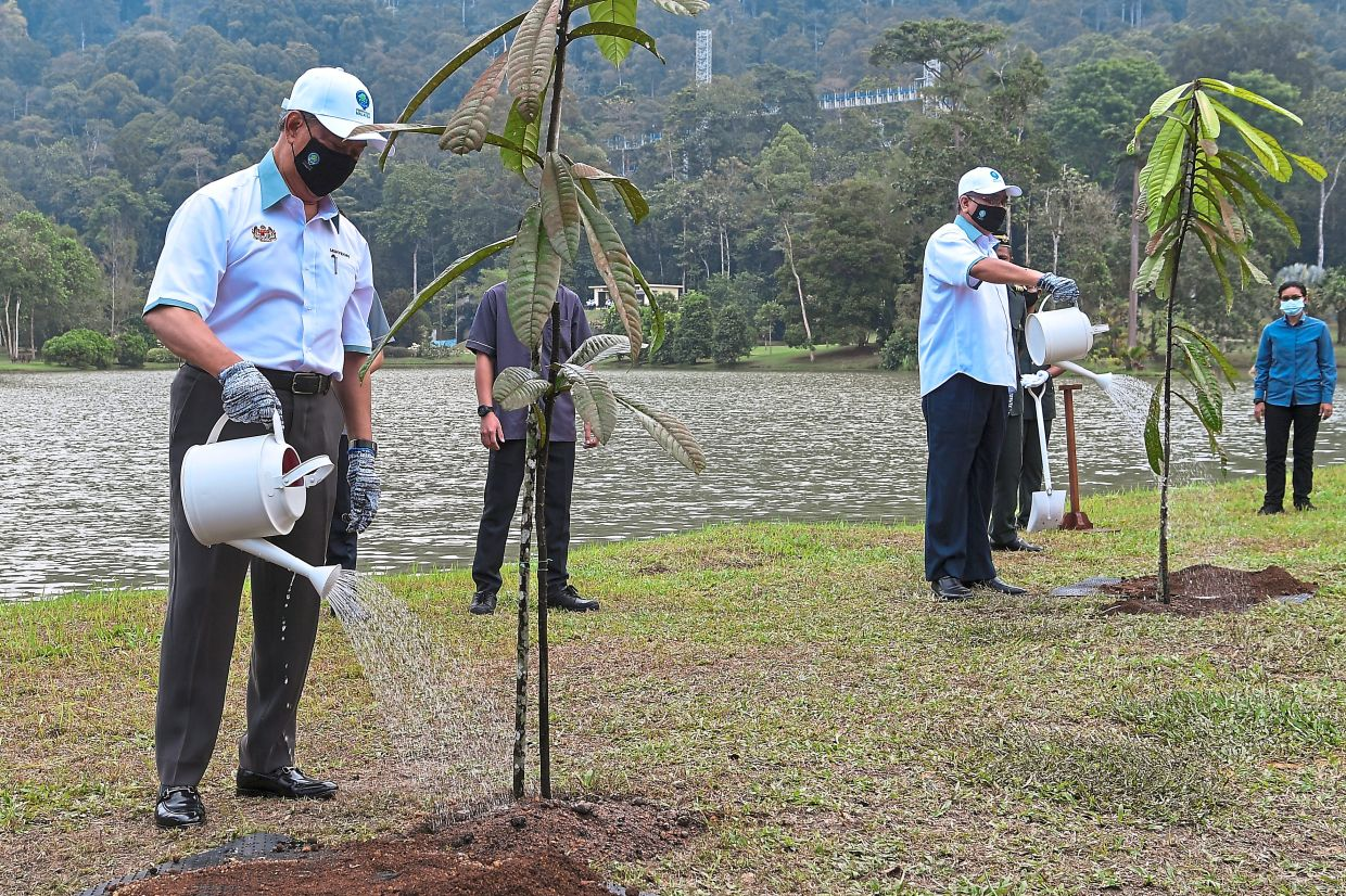 Green efforts: Muhyiddin and Energy and Natural Resources Minister Datuk Seri Dr Shamsul Anuar Nasarah watering the Resak trees that he planted in conjunction with the International Day of Forests 2021 at FRIM in Taman Botani Kepong, Kuala Lumpur. — Bernama