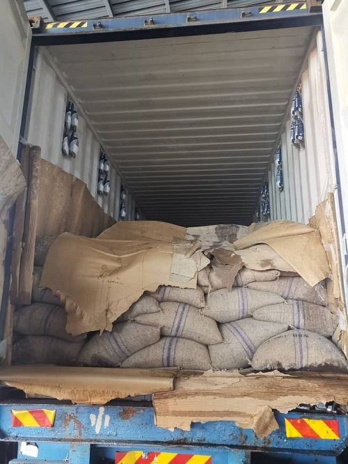 The cocoa from Uganda that was confiscated by the Malaysian Quarantine and Inspection Services Department (Maqis) at the Port of Tanjung Pelepas, Iskandar Puteri, Johor.