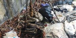 Stench from illegal dumpsite upsets PJ condo residents